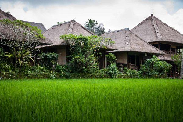 Indonesien-Bali-Häuser im Reisfeld