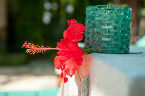 Indonesien-Bali-Hibiscus Blüte