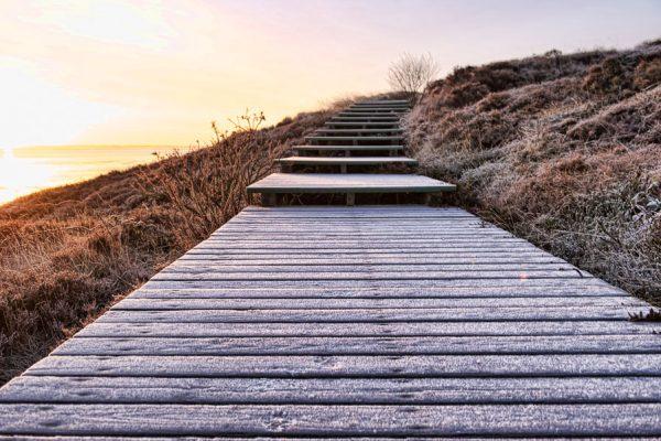 Deutschland-Sylt-Braderuper Heide an einem Wintermorgen
