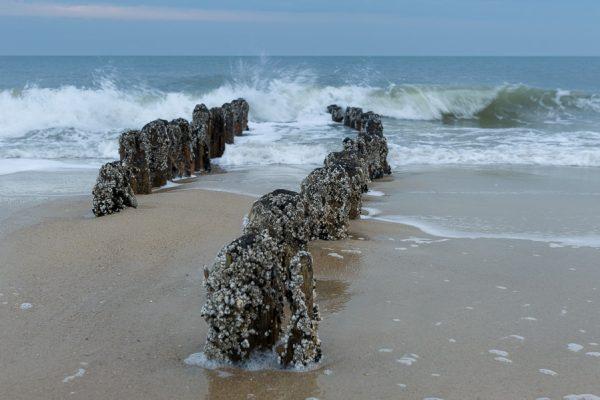 Deutschland-Sylt-Wenningstedt-Buhnen am Strand
