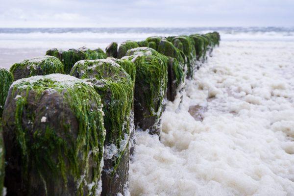 Deutschland-Sylt-Westerland-Buhnen im Meer