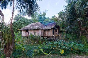 Hütte im Yagua Dorf
