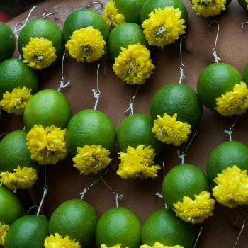 Limonenpiercing / lemon piercing