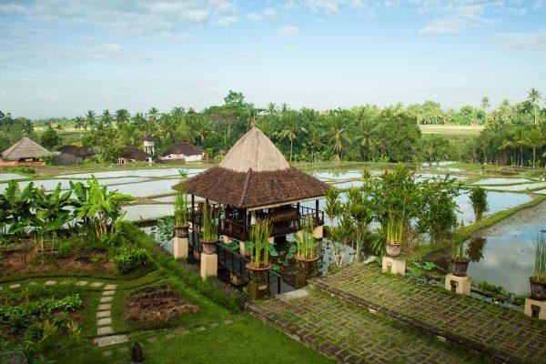 Indonesien-Bali-Ubud