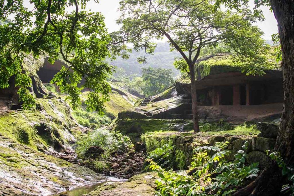 INDIEN-Mumbai-Sanjay-Gandhi-National-Park