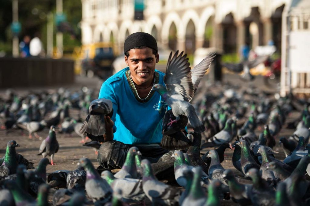 INDIEN-Mumbai-Taubenspiel vor dem Taj Mahal Hotel
