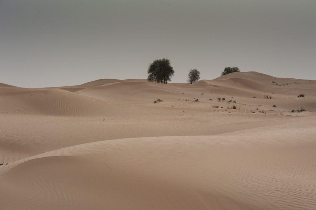 VAE-Dubai-Wüstenlandschaft